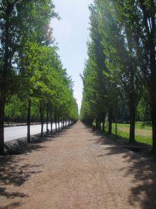 San Martin Park 039